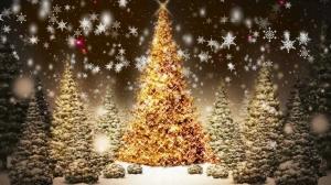 Christmas Tree Festival